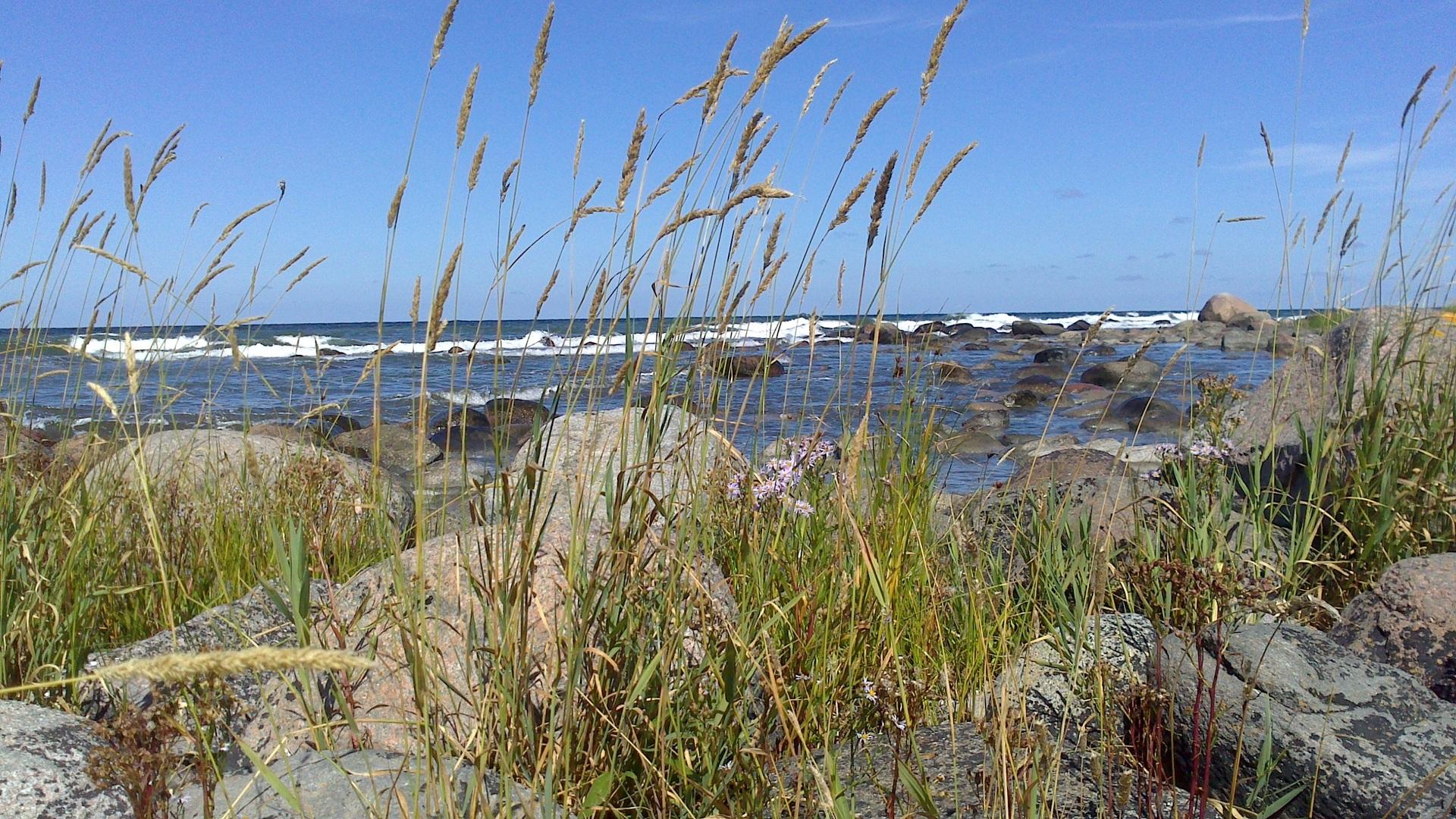 Gotland schweden angeln