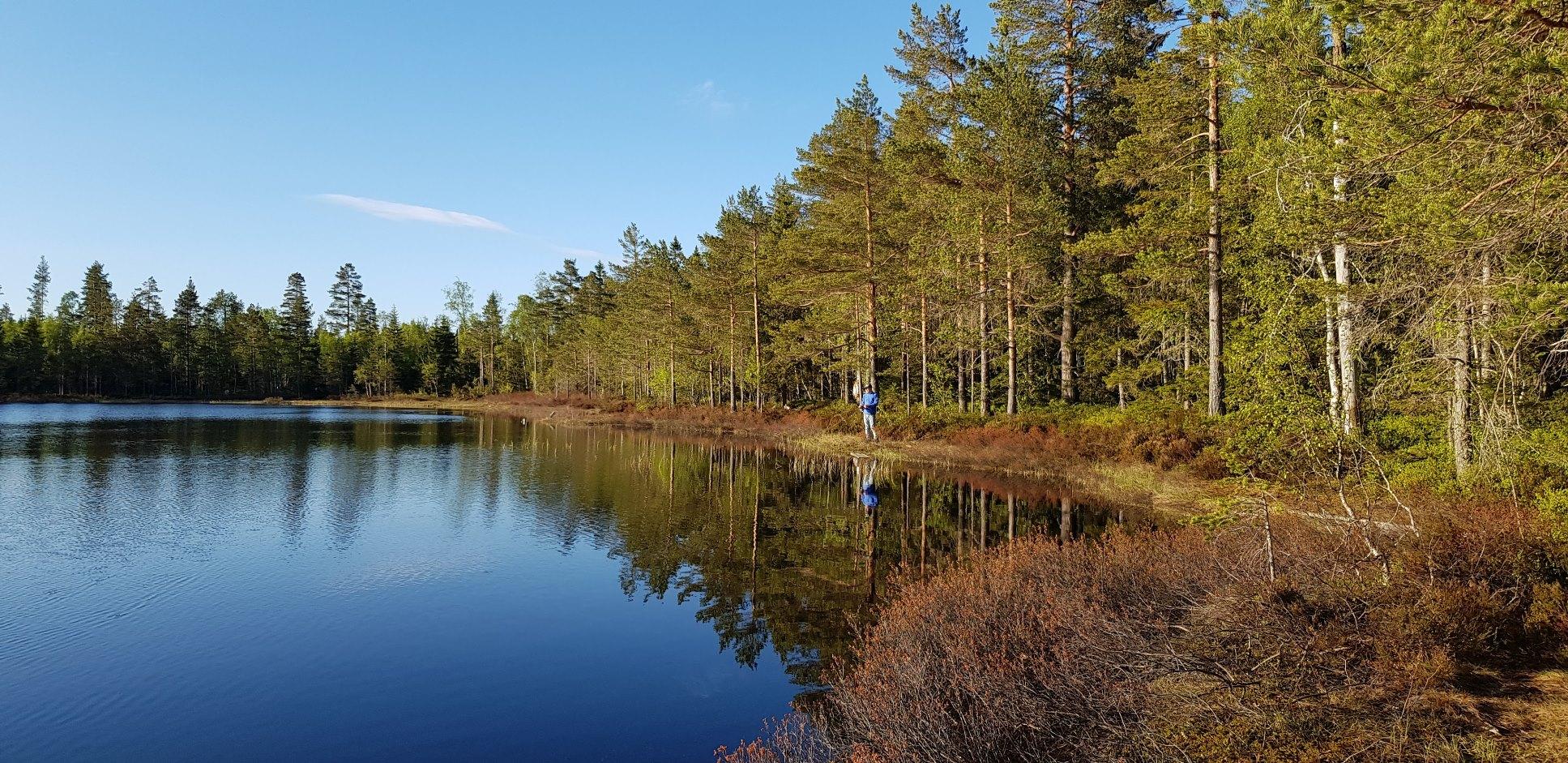 Ångermanland Angeln Schweden