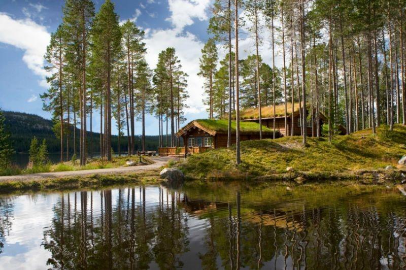 nordschweden ferienhaus schweden